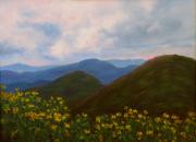 Flowers in the Blue Ridge